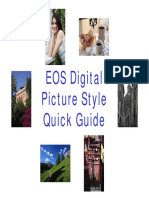 Picture_Style_Quick_Guide.pdf