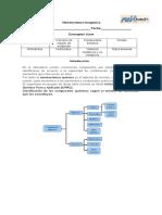 segunda guia (nomenclatura).doc