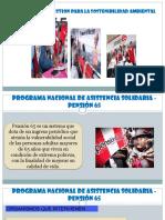 trabajo estrategia de pension 65 ultimo.pptx
