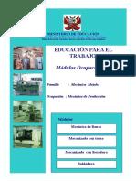 MODULOS  OCUPACIONALE D EBR.doc