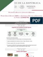 10.- Programa de Atención a Jornaleros Agrícolas.pdf
