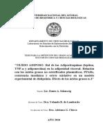 ADIPOSITO.pdf