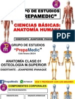 Anatomía Día 01-Ipana