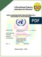 PERICIA.docx