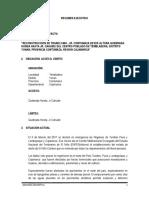 RESUMEN EJECUTIVO CTMAZA.docx