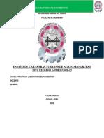 ENSAYO CARAS FRACTURADAS (1).docx