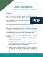 cojinetes_rodamientos.docx