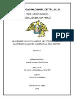 PROYECTO MEJORAMIENTO DEL ACARREO 1.docx