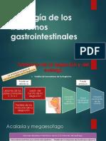 Fisiología de Los Trastornos Gastrointestinales