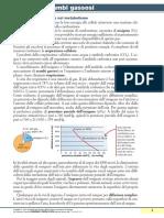 sintesiCap7Saraceni_2012.pdf