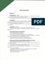 Structura eseului pedagogic.pdf