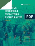 caderno-1_conceitos-principios-e-estrategias-estruturantes_na-pratica-1.pdf