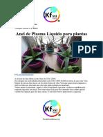 Anel de Plasma Liquido.pdf