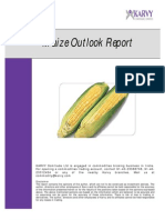 Maize Outlook Report