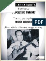 EL PARRANDISTA. Bambuco. Peregrino Galindo. Transc.  piano Gerardo Betancourt.