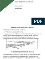 Ambiente Sedimentario Marino Nuevo
