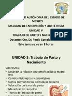 55527982.pdf
