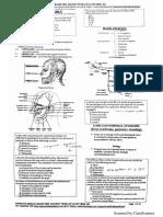 TOPNOTCH Anatomy Pearls September 2018.pdf