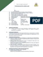 Programación Curricular Intro a Tecnologia de Informacion Mejorado(1)