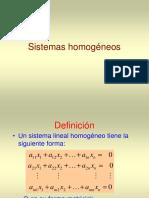 Clase 4 Sistemas Homogéneos