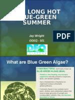 Jay Wright꞉ The Long Hot Blue-green Summer