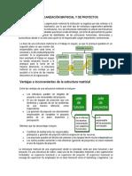 Estructura Matricial y de Proyectos, Organizacion sin limites y Organizacion Virtual.docx