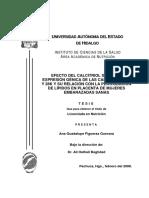 Efecto del calcitriol calbindinas.pdf