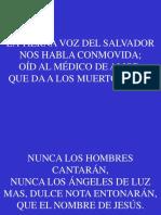 42;La Tierna Voz