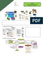 Tarea 1 Primero Medio Plataforma Biologia y Seres Vivos