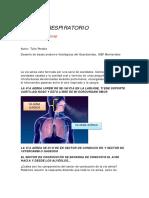 Sistema Respiratorio GV Tulio Peralta