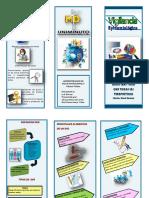 Folleto SVE PDF