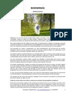 BIOENERGÍA Utilidad Practica-2019