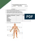 Evaluacion Sistema Linfatico