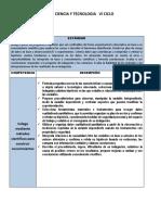 CPMPETENCIAS Y DESEMPEÑOS DE CT.docx