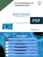 HEMATOPOYESIS (1)