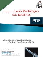 Classificação morfológicas das bactérias