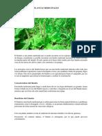 Bibliografía de Plantas Medicinales