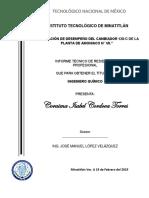 INFORME TECNICO DE RESIDENCIAS CORAIMA I.C.T.docx