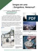 ¿HONGOS EN UNA IGLESIA DE ZONGOLICA, VER., MEXICO?