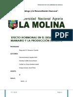 SEMINARIO FINAL.pdf