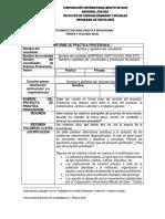 Instrumento Informe Practica Profesional Proyecto