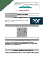 Anexo 5.1-Formato Preinformes - Química Orgánica (1)