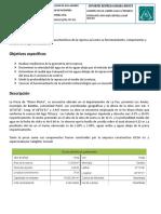 informe represa nacho.docx