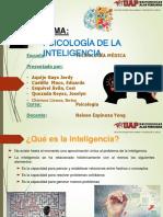Psicologia de La Inteligencia.ppt-1