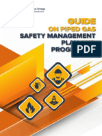 Guide_on_Piped_Gas_Safety_Management_Plan_and_Programmed1.pdf