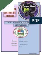 proyecto control.docx