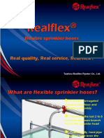 Realflex Promotion Ppt