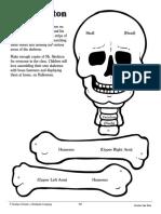 mr._skeleton.pdf
