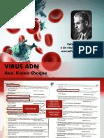 Virus-ADN.pdf