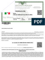 CURP_SAFC800402HJCLLR00